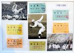 1960年早慶6連戦DSC_8068.JPG