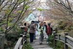 2016-4-1藤林さん撮影20.jpg