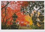 スキャン_20151030 (2).png