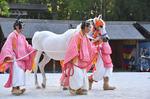 前田泰さん式典白馬と従者DSC_2050.jpg